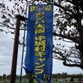 ガンバ大阪 in沖縄キャンプを見に「ごさまる陸上競技場」に行ってきた