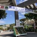 東京ヤクルトスワローズ in沖縄キャンプ「ANA BALL PARK 浦添」に行ってきた