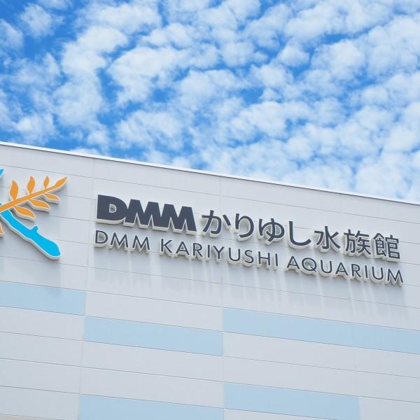 DMMかりゆし水族館07